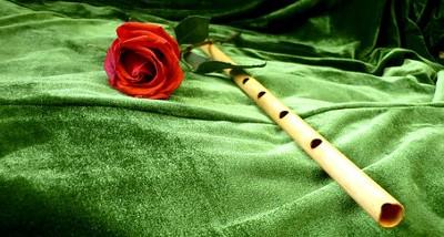 Trumpet Recital - Cat Johnson / Harp Recital - Heloise Davies